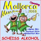 Mallorca Opening Mucke 2018 Scheiß Alkohol (Plus Après Ski, Karneval 2019, Oktoberfest Mix) von Schmitti