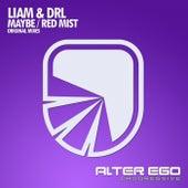 Maybe / Red Mist - Single de Liam