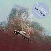 Mélodies bourgeons fourrure musique (& Tuning Tambours) von Two Left Ears