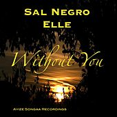 Without You by Sal Negro