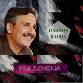 Perzoyena by Haroon Bacha