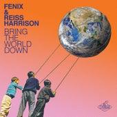 Bring the World Down (Remixes) von Reiss Harrison