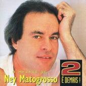 2 É demais! de Ney Matogrosso