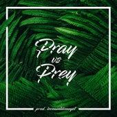 Pray vs. Prey by Tay Collier
