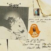 Shiggy von Stephen Malkmus