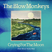 Crying for the Moon di The Blow Monkeys