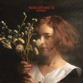 Deluderti di Maria Antonietta