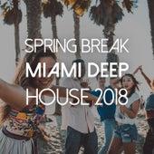 Spring Break: Miami-Deep House 2018 von Various Artists