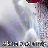 55 Natural Relaxation Tracks by Relajación