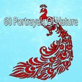 60 Portrayals Of Nature von Entspannungsmusik