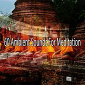 60 Ambient Sounds For Meditation de Meditación Música Ambiente