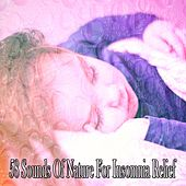 58 Sounds Of Nature For Insomnia Relief by Lullaby Land