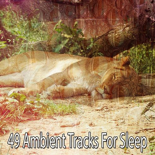 49 Ambient Tracks For Sleep by Baby Sleep Sleep