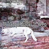 48 Tranquil Tracks To Sleep de White Noise Babies