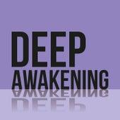 Deep Awakening de Various Artists
