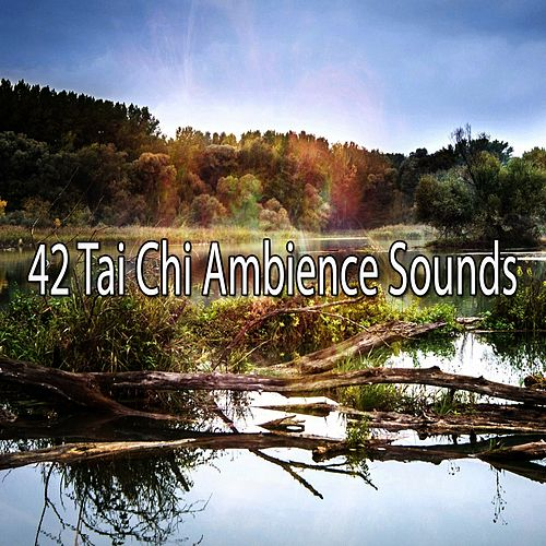 42 Tai Chi Ambience Sounds by Asian Traditional Music