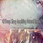 42 Deep Sleep Inspiring Natural Tracks by Ocean Sounds Collection (1)