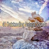 41 Outstanding Natural Sounds von Entspannungsmusik