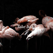 Take it all by Iceage