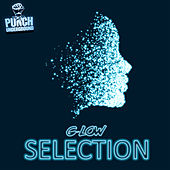 Selection by Various Artists