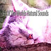51 Of The Worlds Natural Sounds by Ocean Sounds Collection (1)