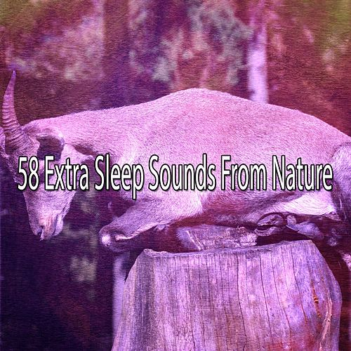 58 Extra Sleep Sounds From Nature de Rockabye Lullaby