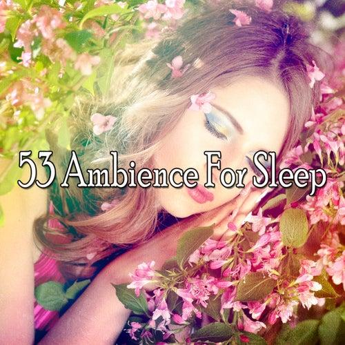 53 Ambience For Sleep de Relajacion Del Mar