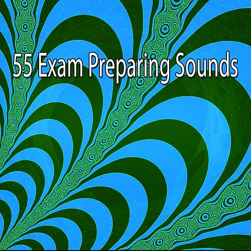 55 Exam Preparing Sounds by Music For Meditation
