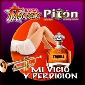Mi Vicio y Perdicion de Various Artists