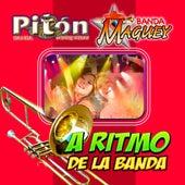 A Ritmo De La Banda de Various Artists