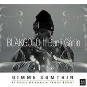 Gimme Sumthin' (feat. Bunji Garlin & Kandyse McClure) by BlakGold