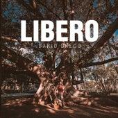 Libero by Dario Greco