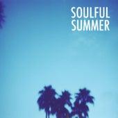 Soulful Summer von Various Artists
