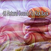 48 Natural Sounds To Kick Back de Musica Relajante