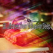 58 Lullabyes From Nature For Sleep by Nature Sound Series