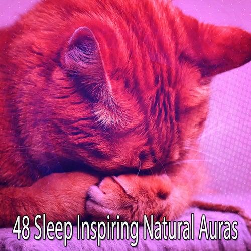 48 Sleep Inspiring Natural Auras de Rockabye Lullaby