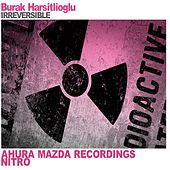 Irreversible by Burak Harsitlioglu