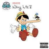 Why Lie by QuazztheKid