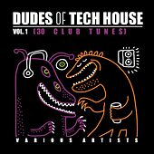 Dudes of Tech House (30 Club Tunes), Vol. 1 de Various Artists