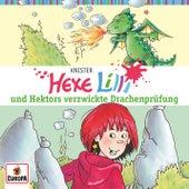017/und Hektors verzwickte Drachenprüfung von Hexe Lilli