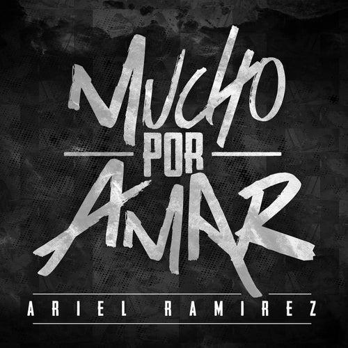 Mucho por Amar (Unplugged) by Ariel Ramirez