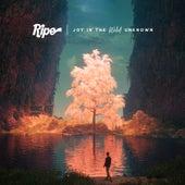 Flipside by Ripe