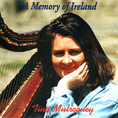 A Memory Of Ireland by Tina Mulrooney