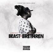 Beast or Brethren by Lawrence Arnell
