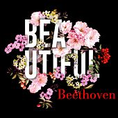 Beautiful Beethoven by Various Artists