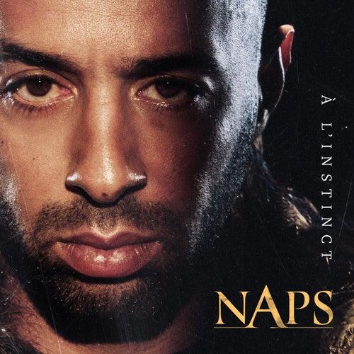 À l'instinct de Naps (Rap/Hip-Hop)