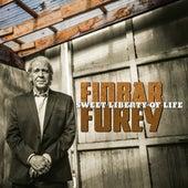 Sweet Liberty of Life by Finbar Furey