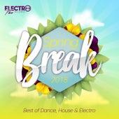 Spring Break 2018 (Best of Dance, House & Electro) - EP von Various Artists