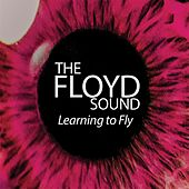 Learning to Fly by The Floyd Sound