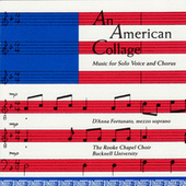 An American Collage von Various Artists